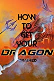 How to Get your Dragon Trained (English Edition)