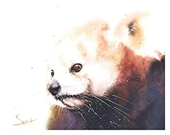Red Panda Watercolor Print - Signed and Dated - Artist Eric Sweet