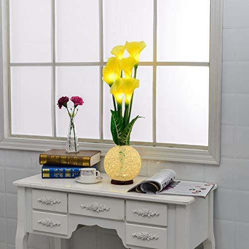 Luz de simulación de luz Nocturna Dongying Flor LED Estudio Cocina baño USB luz Decorativa Nueva lámpara de Botella de Loto de Herradura
