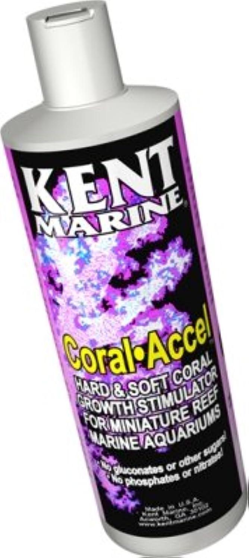 Coral Accel  8 fl oz