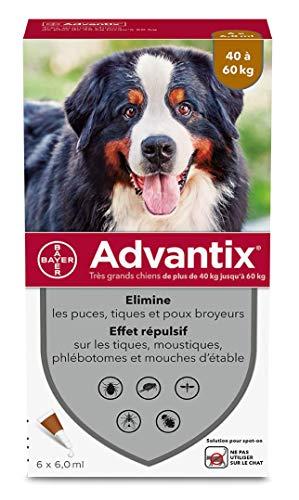 advantix Bayer Molto Soluzione per Grande Cane 4Pipette