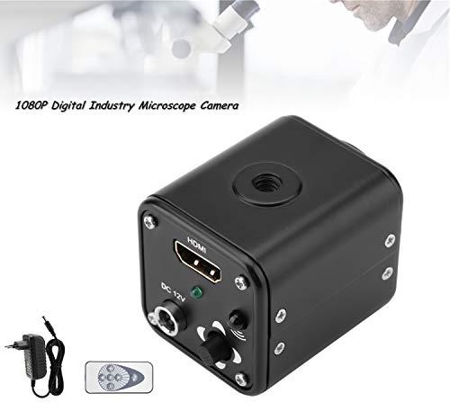 Digitale microscoopcamera voor industrie, 5-12 V, microscoop, microscoop, microscooptechnologie, uitgang 1/3 inch / 60 F/S 1080P Hdmi met afstandsbediening, automatische balans (EU-stekker 220 V)