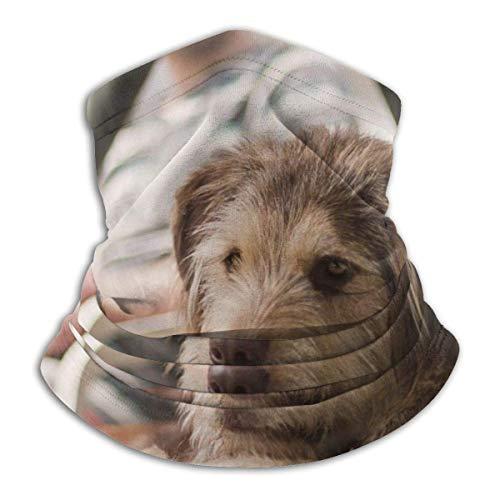 Bozal para perro mullido, hermosa mentira multifuncional máscara elástica, esnood, protector de cuello, bufanda, resistente al viento y al polvo