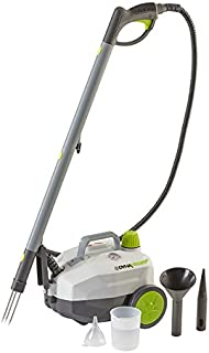 DynaSteam Steam Weeder with Garment Steamer, Cleaning Accessories, and Brass Grill Brush