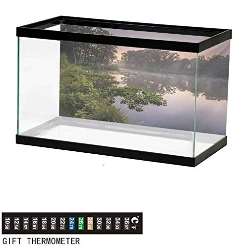 Stevenhome Aquarium Background,Poster Fish Tank Background,Lake in Natura Reserve Springendal Netherlands Foggy Morning in Woods Ecology Wallpaper Fish Tank Backdrop L36 X H16 inch