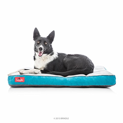 """Brindle Soft Shredded Memory Foam Dog Bed with Removable Washable Cover, 34"""" x 22"""", Teal AmazonPets Bed Beds Brindle Dog Foam Food from Memory on Save Selection Soft Supplies Top"""