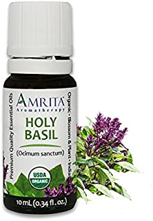 Amrita Aromatherapy Organic Holy Basil Essential Oil, 100% Pure Undiluted Ocimum sanctum, Therapeutic Grade, Premium Quality Aromatherapy oil, Tested & Verified, 10ML