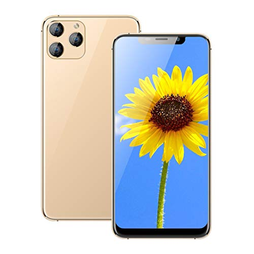 Unlocked Smartphones, X20Pro-L (2020) Android Phone, 6.11-inch HD+U Nouth Screen, 3GCDMA : 850/2100 Carrers, 2GB RAM 16GB ROM, 4800mAhBuilt-in, Unlocked Cell Phones. (Support T-Mobile) (Gold)