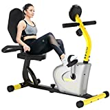 cycool Recumbent Exercise Bike, Magnetic Indoor Cycling Bike for Seniors Recument Stationary Bikes with Adjsutable Resistance and LCD Display For Home Cardio Workout (orange)