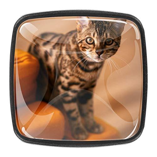 (4 unidades) pomos de cristal para armarios de armario, tiradores de cajón de 3,8 cm, tiradores de cajón para armarios de cocina, estanterías, estanterías, cajoneras, gatos en sofá naranja