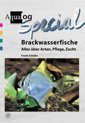 Brackwasserfische: Alles über Arten, Pflege, Zucht