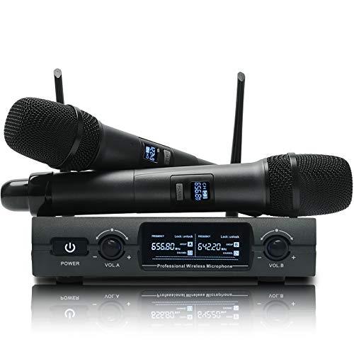 TKOAIY Sistema de micrófono inalámbrico profesional de doble canal con 2 micrófonos, con pantalla LCD para fiestas familiares, iglesia, metting, canto