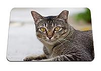 22cmx18cm マウスパッド (猫顔目悲しみ縞模様) パターンカスタムの マウスパッド