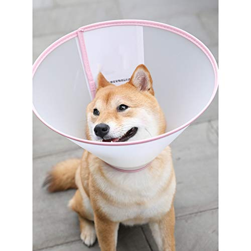 LOVE&HOME Hund Katze Kegel-Kragen Erholung E-Kragen Klar Elizabeth Plastic Protect Halsband For Kitten-Hündchen Haustier Chirurgie Remedy Grooming (Color : Pink, Size : A3)