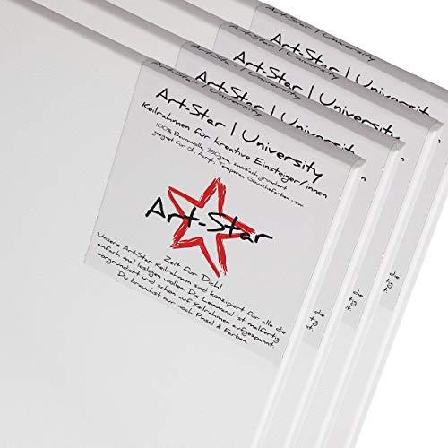 Art-Star 4X University KEILRAHMEN 50x70 cm | Leinwände auf Keilrahmen 50x70 cm | Leinwandtuch vorgrundiert, malfertige bespannte rechteckige Keilrahmen mit Leinwand zum malen