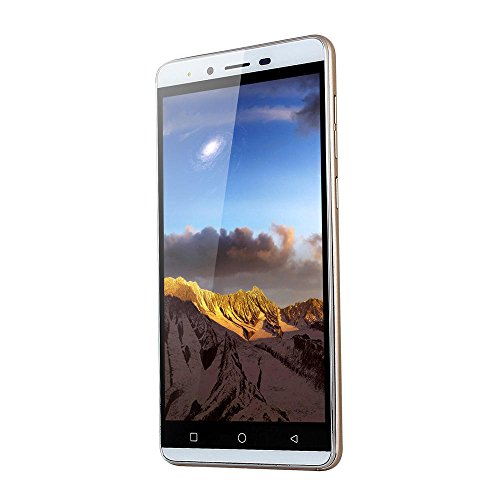 New Unlocked Smartphone - 5.0'' Android Quad-Core 512MB RAM+4G 3G Cellphone Dual Camera/SIM HD Display Mobile Phone (Gold, 5.0 inches)