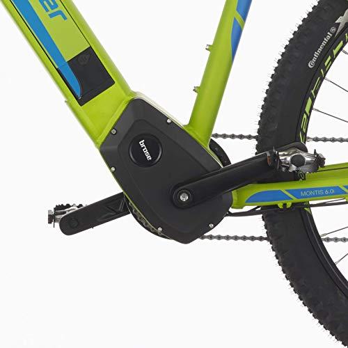 E-MTB FISCHER  MTB MONTIS 60i (2019) grün E-Mountainbike kaufen  Bild 1*