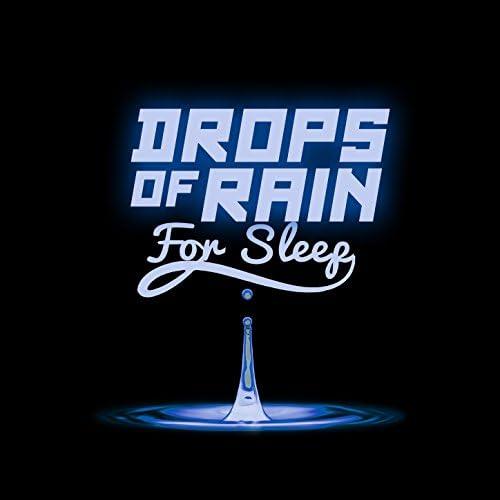 Meditation Rain Sounds & Deep Sleep Rain Sounds & Meditation Rain Sounds