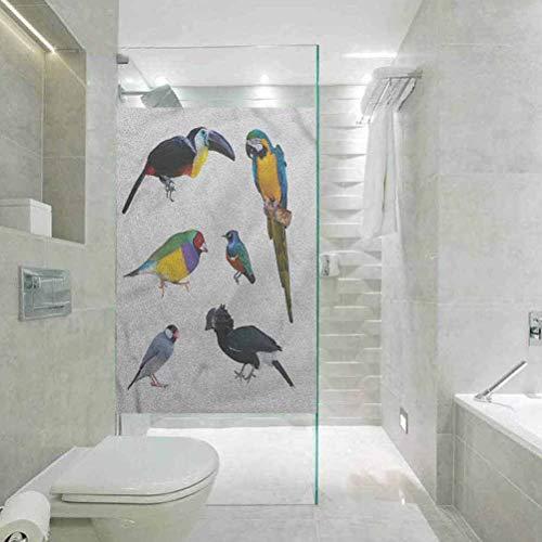 Adhesivo estático para ventana de cristal manchado con diseño de pájaros tropicales loros Java gorrión, sala de estar, dormitorio, cocina, vestíbulo, porche, oficina, 45 cm de ancho x 89 cm de largo.
