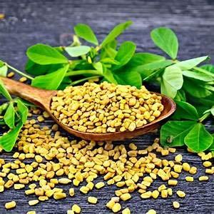 Alick 100 semillas de vegetales de fenogreco