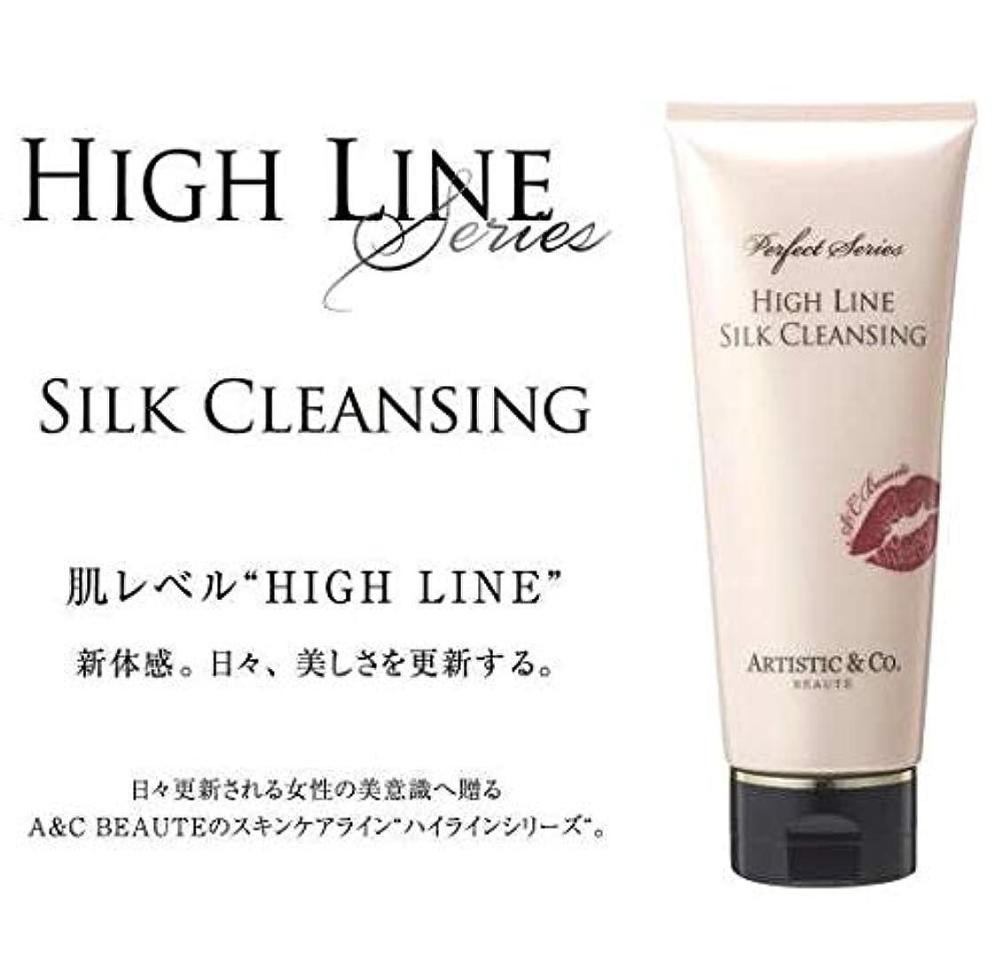 真面目な維持する配管工ARTISTIC&CO. (アーティスティック) HIGH LINE SILK CLEANSING ハイライン シルククレンジングジェル 200g レディス メンズ洗顔 美容液クレンジング