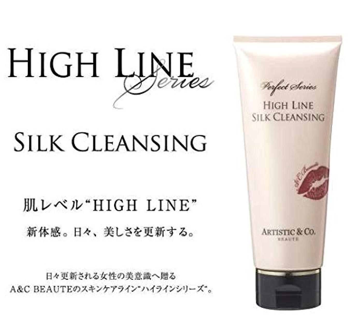豪華な男東ARTISTIC&CO. (アーティスティック) HIGH LINE SILK CLEANSING ハイライン シルククレンジングジェル 200g レディス メンズ洗顔 美容液クレンジング