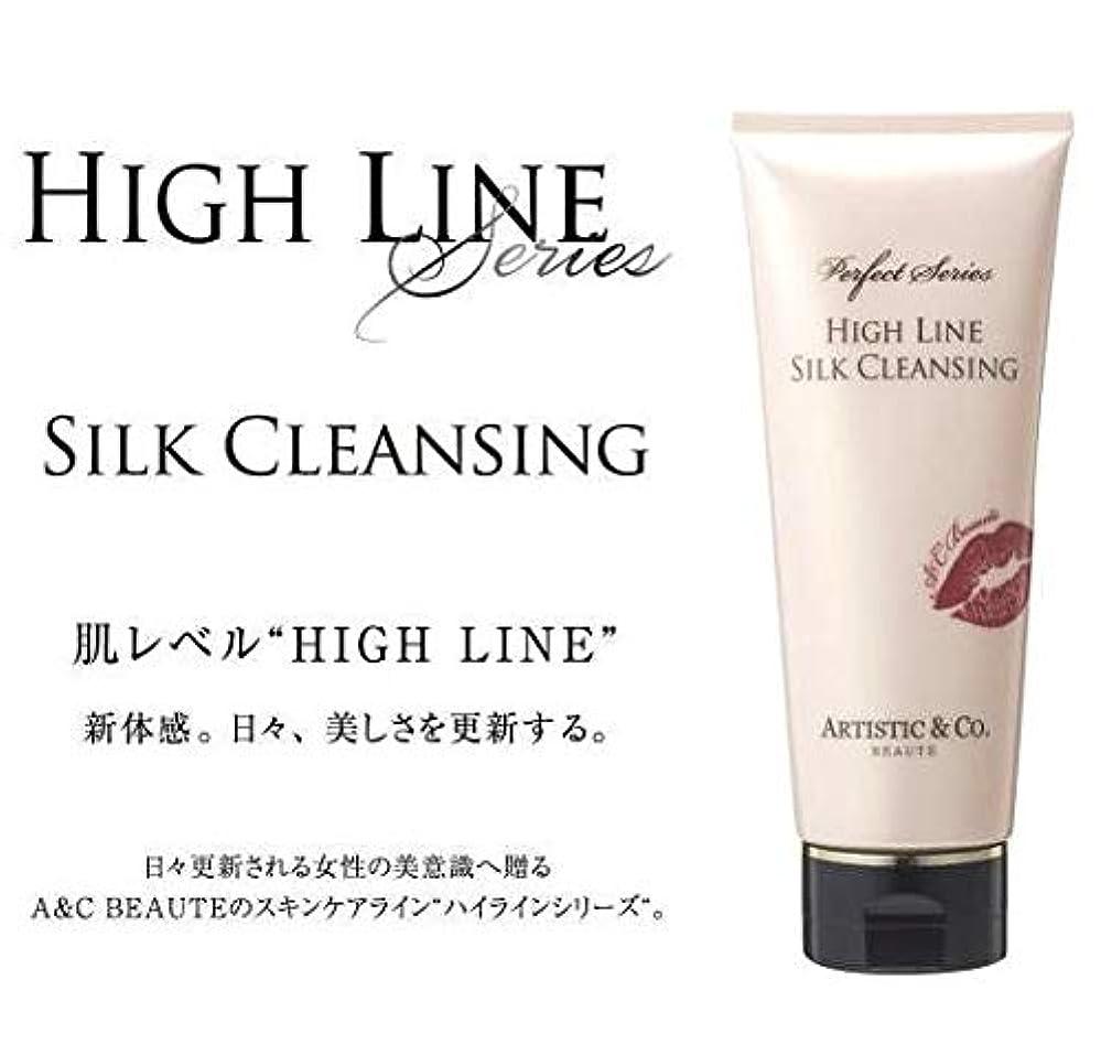 ベーカリー匿名マウントバンクARTISTIC&CO. (アーティスティック) HIGH LINE SILK CLEANSING ハイライン シルククレンジングジェル 200g レディス メンズ洗顔 美容液クレンジング