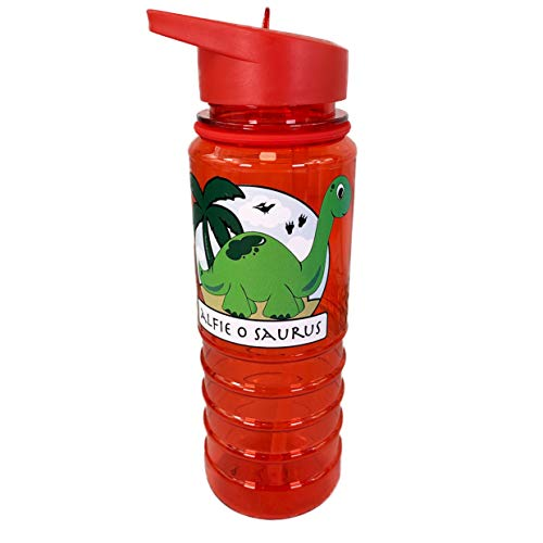 The Supreme Gift Company Personalised Kids Plastic Drinks Water Bottle Green Dinosaur On Red Bottle School Design (800ML)