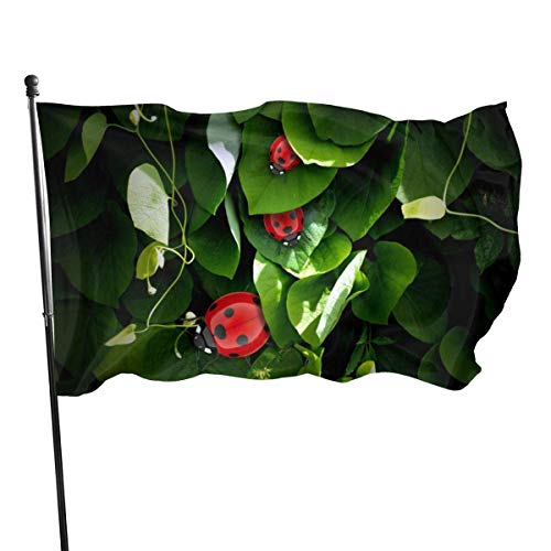 3x5 FT Flag Garden Banner, Cute Ladybird Polyester Double Stitched, Durable and UV Fade Resistant, for Home Garden Decor