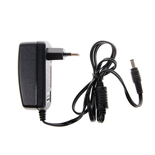 TEMPO DI SALDI Alimentatore 2 Ampere 12 Volt Per Telecamera E Striscia Led