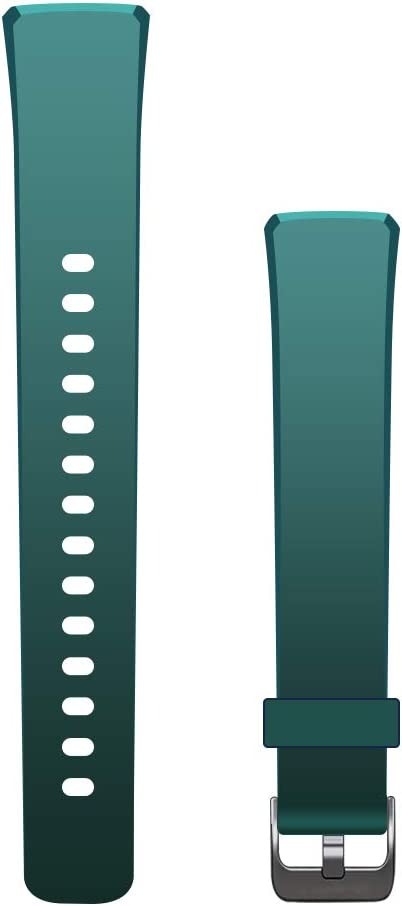 MorePro V19 Fitness Tracker Band, Adjustable Replacement Accessories Classic Sport Strap (Green)