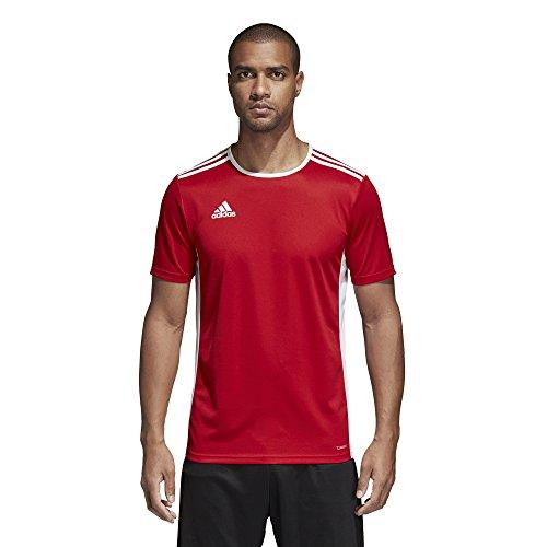 adidas Entrada 18 JSY Jersey, Hombre, Rojo (Power...