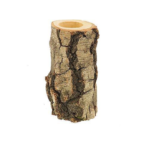 HOFMEISTER® Teelichthalter aus Birken-Holz, großer Kerzenhalter im Birken-Baumstamm, 15 x 8 x 8 cm