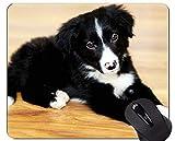 Mauspads - Schäferhund-Hundebrille-Militärfunktion, rutschfeste Gummibasis Mousepad des Border-Collie