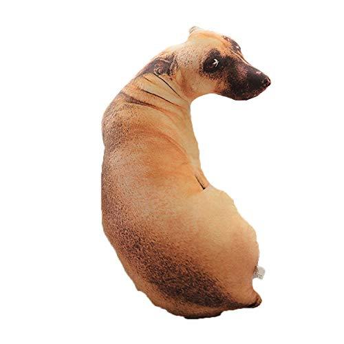 Greatangle Almohada de simulación 3D para Perro, cojín de Felpa Shapi...