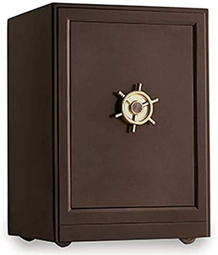 HDZWW Small Safes for Home Personal Safe Cabinet Safes Remotely Fingerprint Unlock Digital Security,Safe Box,Home Safe,Double Safety Key Lock and Password