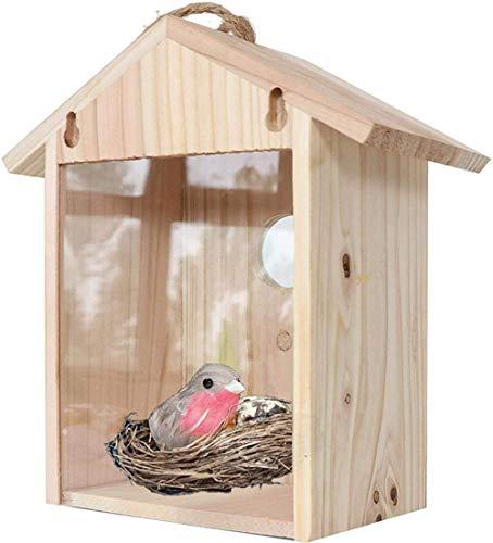 Casa de Madera para pájaros, Caja Nido para observación de Aves Silvestres Refugio Ventana para el hogar Comedero para pájaros a Prueba de Ardillas Naturaleza Ver pájaro a través de la Ventana,