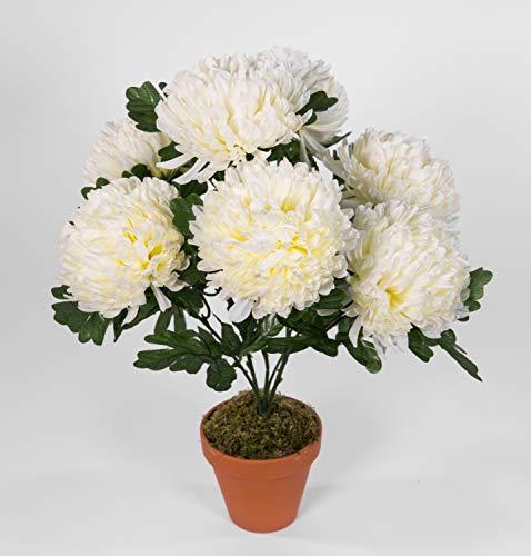 Seidenblumen Roß Chrysantheme 48cm weiß-Creme im Topf LM Kunstpflanzen Kunstblumen künstlichen Pflanzen Blumen