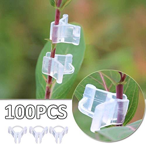 100 Stück Pflanzentransplantationsclips, Mini transparente Kunststofftransplantationsclips, Tomatenrebenclips, Pflanzenstützen Verbinden Pflanzen, die Transplantationsclips säen