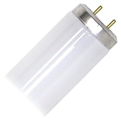 "G E Lighting 10282 0 GE 25W 28"" CW Fluo Bulb"