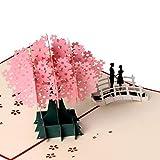Coppia di biglietti di auguri 3D, regalo per anniversario, compleanno, romantico, regalo di San Valentino.