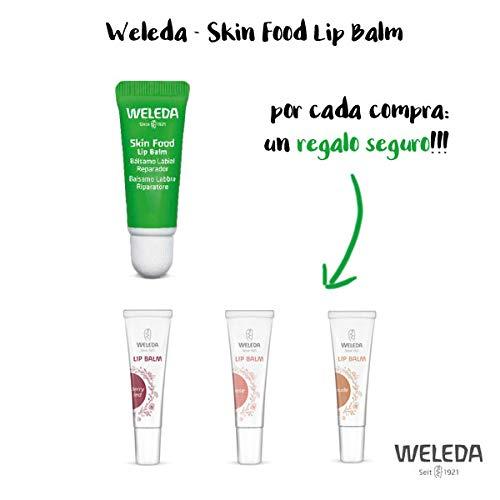 NOVEDAD WELEDA: Skin Food Lip Balm + Balsamo Labial con color de Regalo!