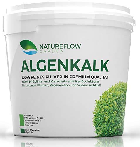 Algenkalk feinstes Pulver 100% rein für Buchsbaum - Widerstandskraft und Regeneration (z.B. bei Buchsbaumzünsler) - Premium-Qualität aus Island – Buchsbaumdünger und Naturdünger - 10 kg Eimer
