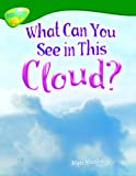 Oxford Reading Tree: Level 12: Treetops Non-Fiction: What Can You See in This Cloud? Minshall, Matt