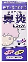 【指定第2類医薬品】宇津こども鼻炎シロップA 120mL ×2