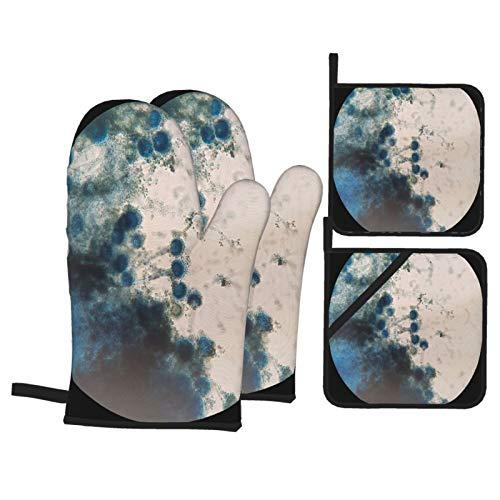 4-teiliger Ofenhandschuh und Topflappen,Pilze unter mikroskopischer Ansicht Aspergillus,rutschfeste wasserdichte und hitzebeständige Mikrowellenhandschuhe zum Kochen und Backen in der Küche
