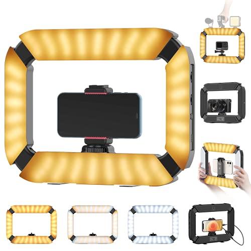 Smartphone Video Rig PICTRON U200 Handheld LED Ring Light Selfie Light Phone Video Stabilizer for Camera, Smartphone, Gopro, YouTube, Setup, Filmmaking, Makeup, Vlogging