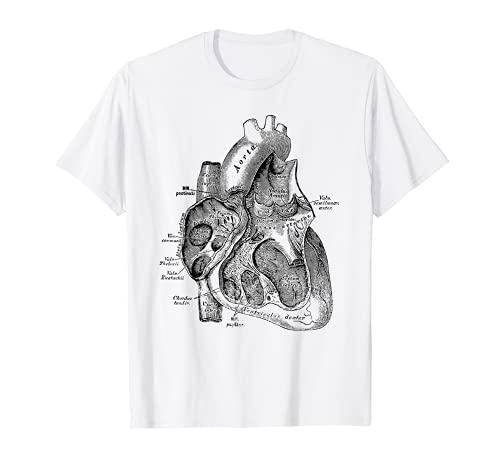 Right Chamber of the Human Heart Anatomy Tee T-shirt