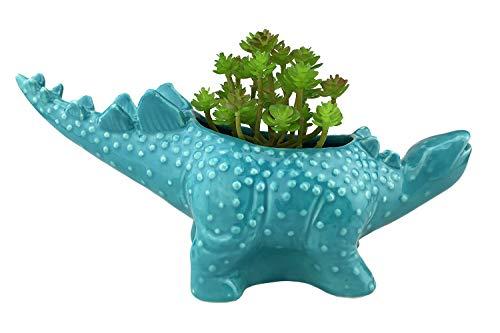 VanEnjoy 12 inches Cute Cartoon Dinosaur Ceramic Succulent Planter, Water Culture Hydroponics Bonsai Cactus Flower Pot,Air Plant Vase Holder Desktop Decorative Organizer (Stegosaurus, Blue)