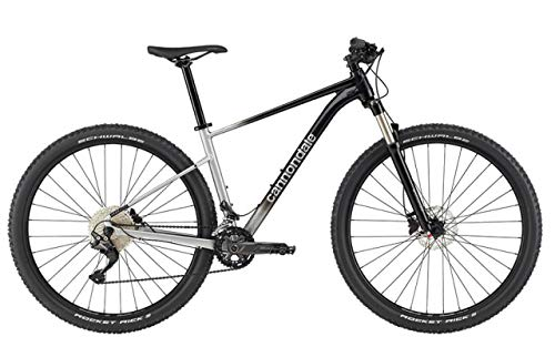 CANNONDALE Trail SL 4 29